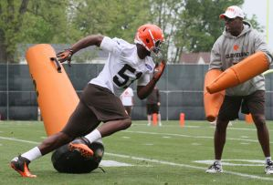 mingo browns rookie camp