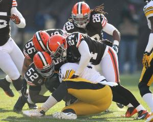 2013_11_browns_steelers_preview