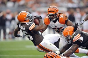 2014_01_mcgahee_browns_right